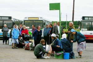 В Набережных Челнах по вторникам на дачи будут запускать больше автобусов