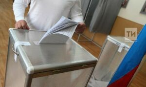 Наблюдателей допустят ко всем этапам голосования по Конституции