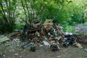 В Татарстане из-за Covid-19 выявили вдвое меньше экологических нарушений