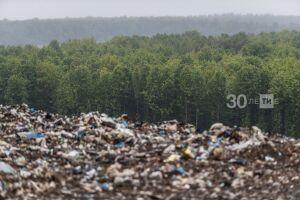 Экологи Татарстана обнаружили 70 нарушений с помощью фотоловушек
