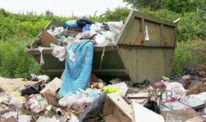 Жители Татарстана жалуются на несвоевременный вывоз мусора