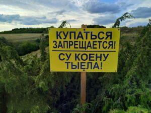 В Татарстане мужчина утонул на глазах у сестры после посиделок на берегу пруда