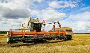 В Татарстане началась уборка зерновых на выборочных полях
