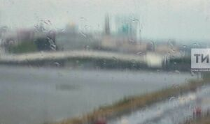 Татарстанцев предупредили о грозах и сильном ветре