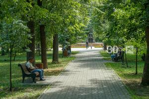 За последние десять лет Казань стала зеленее из-за полумиллиона новых деревьев