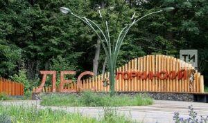 В Горкинско-Ометьевском лесу проведут первую в этом сезоне детскую барахолку