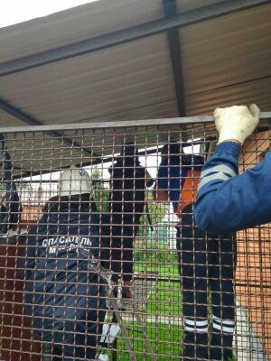 В Казани спасли ребенка, который проткнул руку железным прутом и повис на заборе