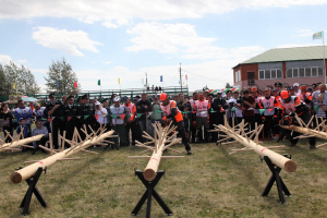 Татарстан возьмет под контроль оборот древесины