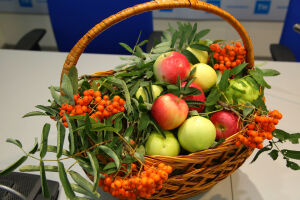 Праздник «Яблочный Спас в Красновидово» пройдет в онлайн-формате