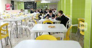 В школьных столовых Татарстана не хватает овощерезок и морозильных камер