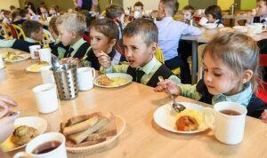 В Челнах бесплатным горячим питанием охватят 32 тысячи школьников