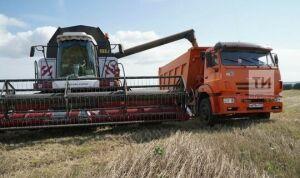 Экспорт продукции АПК Татарстана вырос на 73,8 млн долларов