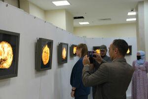 В музее Болгарской цивилизации открылась выставка с причудливыми камнями