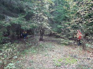Спасатели нашли в лесу в РТ женщину с детьми, которые собирали грибы и потерялись