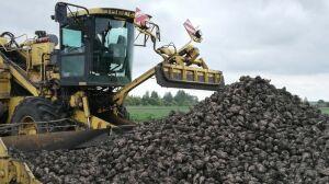 В Татарстане планируют собрать около двух млн тонн сахарной свеклы