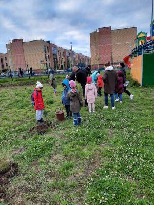 В пестречинском детсаду «Ивушка» воспитанники высадили свыше ста деревьев