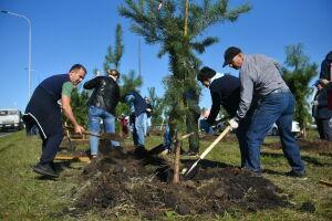 Власти Челнов призвали повторить подвиг первостроителей по озеленению города