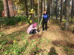 Ветераны лесного хозяйства Агрыза приняли участие в посадке деревьев