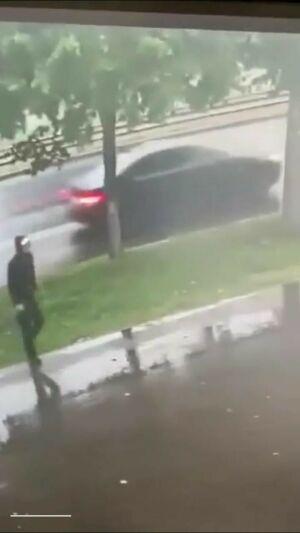 На видео попало, как в Казани мужчина украл  тую  около стоматологии