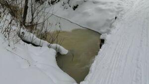 Жителей поселка под Челнами испугал желтый цвет ручья