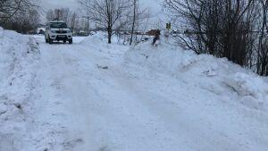 В Казани будут штрафовать водителей за проезд по незаконной ледовой переправе