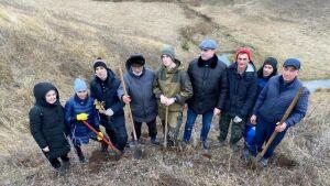 Казанские ученые разработали технологию для создания агролесокомплексов