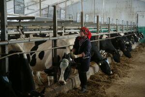Названы самые травмоопасные профессии в сельском хозяйстве