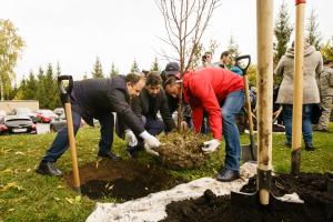 Новое место отдыха горожан в Казани украсили яблони