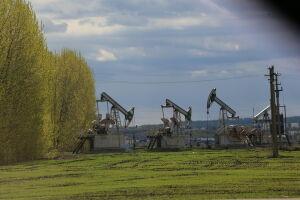 За год налоговые поступления от малых нефтяных компаний РТ снизились на 32%