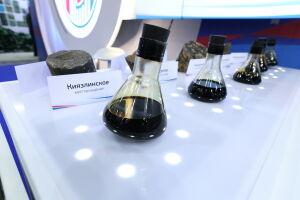 Минниханов: Нефтяные компании РТ в пандемию ни на час не останавливались