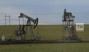 Ростехнадзор РТ за 2020 год выявил у малых нефтяных компаний почти 600 нарушений