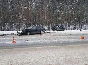 Два человека погибли в массовом ДТП на границе Татарстана и Марий Эл