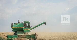 Фермеры Нижнекамского района выиграли почти 62 млн рублей грантов в 2020 году