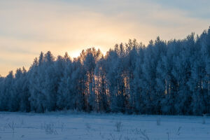 Синоптики Татарстана назвали самый холодный день этой недели