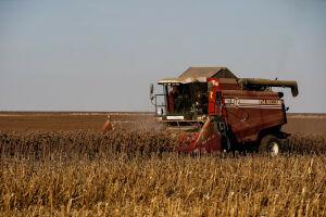В Татарстане экспорт продовольствия растет третий год подряд