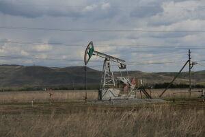Татарстан и ХМАО подняли вопрос поддержки нефтедобычи в письме Путину