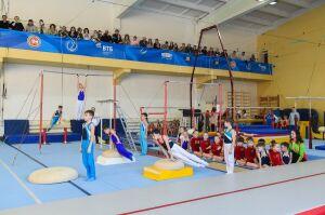 В Нижнекамске обновят первую спортшколу города