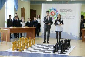 В школе Елабуги открылась четвертая по счету шахматная зона