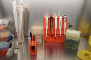 В Казани открыли химические соединения, которые могут использовать в терапии рака