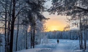 На следующей неделе в Татарстане ожидается до 30 градусов мороза