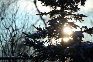 В Татарстане ожидаются морозы до -29 градусов