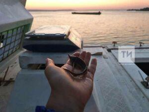 В рыбоводном комплексе «Биосфера-Фиш» построят еще три пруда для карповых рыб