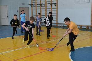 В пяти школах Набережных Челнов начнут обучать флорболу