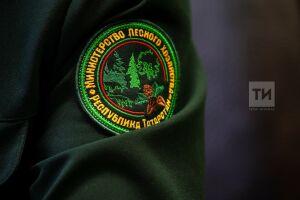 До конца 2022 года Минлесхоз Татарстана начнет предоставлять все услуги в «цифре»