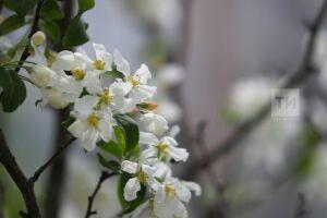 Жители Татарстана отдохнут в марте три дня подряд