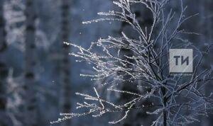 К концу недели в Татарстане температура воздуха поднимется до +7 градусов