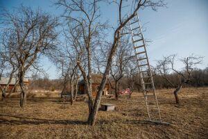 Дачники Татарстана сэкономят на кадастровых работах благодаря новому закону