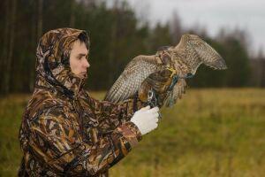 Госкомитет по биоресурсам в 4 раза увеличил выдачу разрешений на добычу птиц