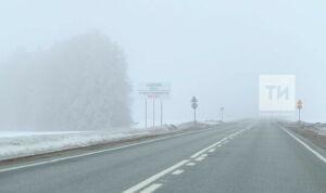Синоптики Татарстана предупреждают о тумане и гололедице