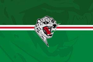 Хоккейный клуб «Ак Барс» пошутил про свой «новый» логотип